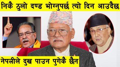 Photo of निकै ठुलो दण्ड भोग्नुपर्छ त्यो दिन आउदैछ, नेपलीले दुख पाउन पुगेकै छैन : Dr. Jagman Gurung