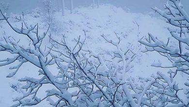 Photo of हिमपातले रसुवा–केरुङ आवतजावत बन्द
