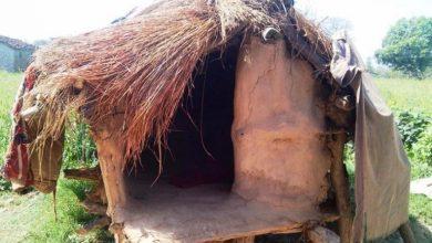 Photo of गए राति अछामको छाउगोठमा एक युवतीको मृत्यु