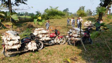 Photo of भारतबाट अवैधरूपमा ल्याउँदै गरेको दश क्विन्टल कुखुरा बरामद