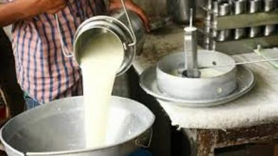 Photo of मागभन्दा उत्पादन बढी