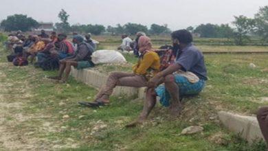 Photo of लुकिछिपी कन्टेनर चढेर काभ्रे आइपुगेका ५० भारतीय नागरिक पक्राऊ