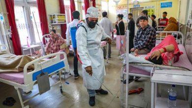 Photo of विश्वभर दुई करोडभन्दा बढि कोरोना संक्रमित, मृतकको संख्या सात लाख ३७ हजार नाघ्यो