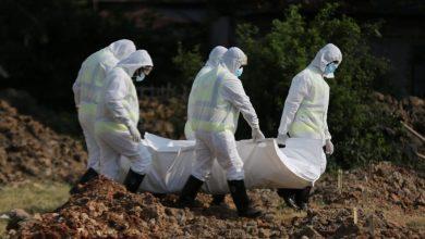 Photo of कोरोना अपडेटः विश्वभर ४ लाख ८० हजारको मृत्यु