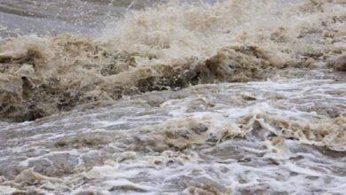 Photo of आजदेखि पाँच दिन भारी वर्षा हुने, सतर्कता अपनाउन अनुरोध