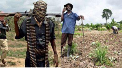 Photo of बोको हरामद्वारा कम्तीमा ४३ जना किसानको हत्या