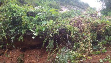 Photo of सिनागालको जङ्गलमा ३५ बर्षिय पुरुषको शव फेला