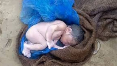 Photo of अस्पतालको सानो गल्तीले मृत शिशुको जन्म