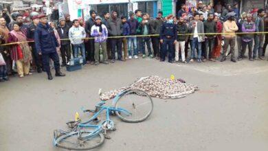 Photo of ट्रकको ठक्करबाट साईकलयात्री १३ वर्षीय भिमको मृत्यु